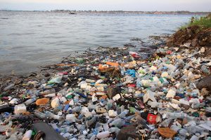Liadh Ní Riada, MEP – 'Government must act to slow plastic disaster'