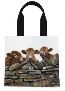Bags of Sustainable Style from Artist Kelly Hood